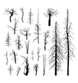 Set of dead trees vector image