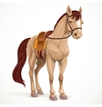 Beige horse saddled and in harness isolated on a vector image vector image