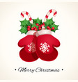 christmas mittens with other decorative elements vector image vector image