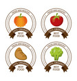 colorful logos set of fresh and healthy organic vector image