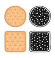 crackers cookies with seeds vector image vector image