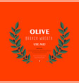 decorative wreath olive branch for labels vector image