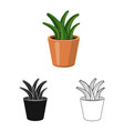 design of cactus and pot icon set of vector image