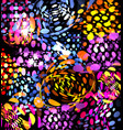 isolated abstract colorful bubbles on black vector image vector image