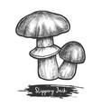 sketch bolete fungus or autumn mushroom vector image vector image