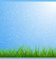 spring blue background with green grass and dandel vector image vector image