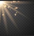transparent sunlight special lens vector image