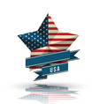 USA star in national flag vector image vector image