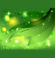 beautiful green background with leaves and dew vector image