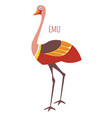emu ostrich cartoon bird from australia vector image