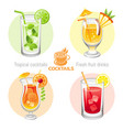 fresh fruit drink bar logo icon set flat vector image