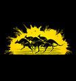 group of kangaroo jumping graphic vector image
