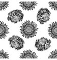 seamless pattern with black and white protea vector image