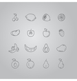 Set line icons fruit vector image