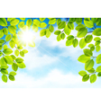Tree branch vector image vector image