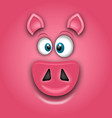 chinese zodiac sign year of pig happy new vector image
