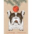 Christmas card with French Bulldog vector image