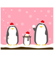cute big fat penguin family wear christmas hat vector image vector image