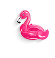 float flamingo ring icon vector image vector image