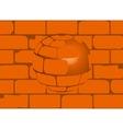 House Brick Ball vector image vector image