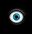 human eye isolated on black background vector image vector image