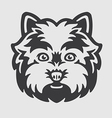 West Highland White Terrier Head Logo Mascot vector image vector image