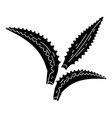 aloe vera leaf icon simple style vector image vector image