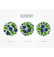 Blueberry round labels creative concept vector image vector image