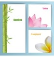 Exotic tropical flowers invitation card layout vector image vector image