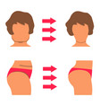 set of white woman body part fat and sporty body vector image vector image