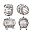sketch barrels whiskey oak casks wooden wine vector image