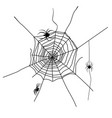 spiders and web icon vector image