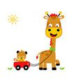 animals playing time giraffe and tiger cartoon vector image vector image