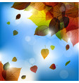 autumn leafs background- fall with back light vector image vector image
