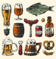 beer food set with mug bottle wheat hop elements vector image vector image