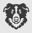 Border Collie Head Logo Mascot Emblem vector image