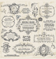Calligraphic Design Elements vintage set vector image vector image
