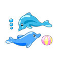 cute dolphins with playing ball vector image vector image