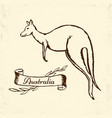 kangaroo sketch on vintage paper vector image