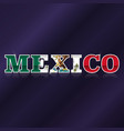 mexico flag symbol vector image