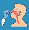 nasal swab testing vector image