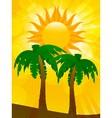 palm trees and summer sun vector image vector image