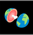 planet earth in cut with bone structure planet vector image
