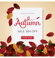 autumn background sale vector image vector image