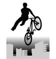 bmx rider vector image vector image