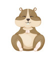 hamster cartoon cute pet character rodent vector image vector image