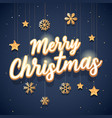 merry christmas text with elegant vector image vector image