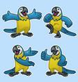 set cartoon funny blue and gold macaw bird vector image