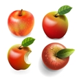 Set of red ripe Apples four various view vector image vector image