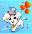 valentine card with puppy labrador vector image